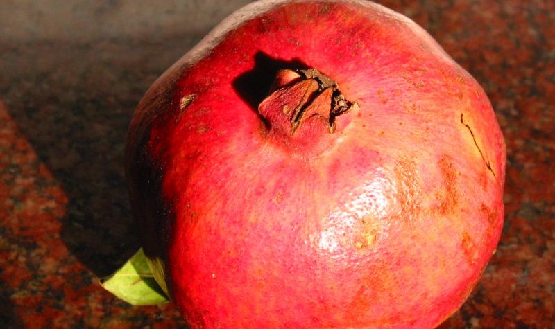 pomegranate-1253519